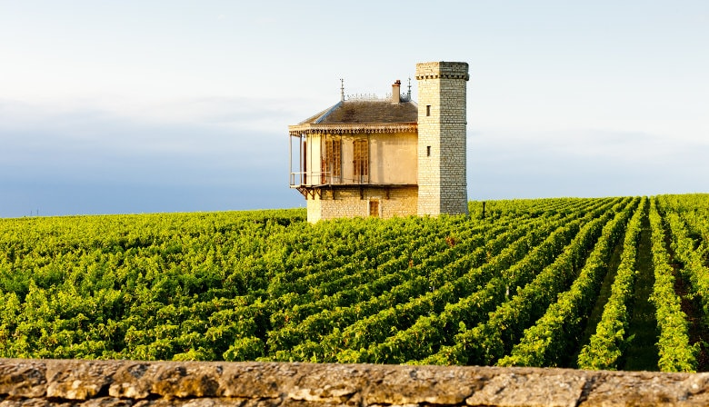 Burgundy Full Day Tour from Dijon: wineyards, tastings & visit of Beaune