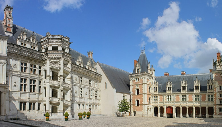 Excursión guiada de un día al valle del Loira con almuerzo: los castillos de Blois, Cheverny y Chambord - desde la cuidad de Tours