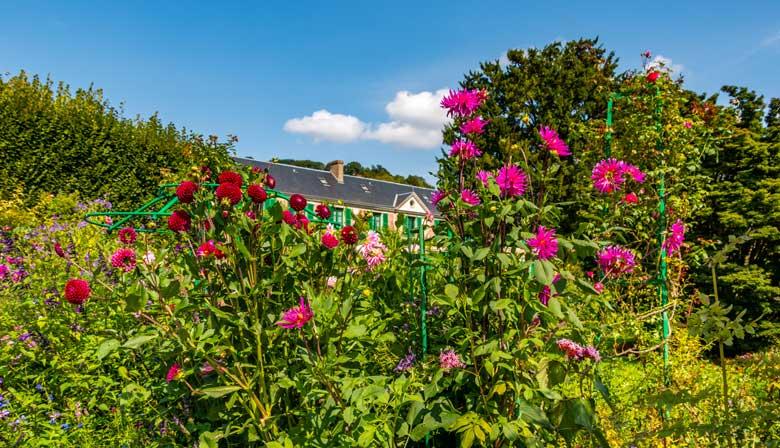 Flores en el jardín de Claude Monet
