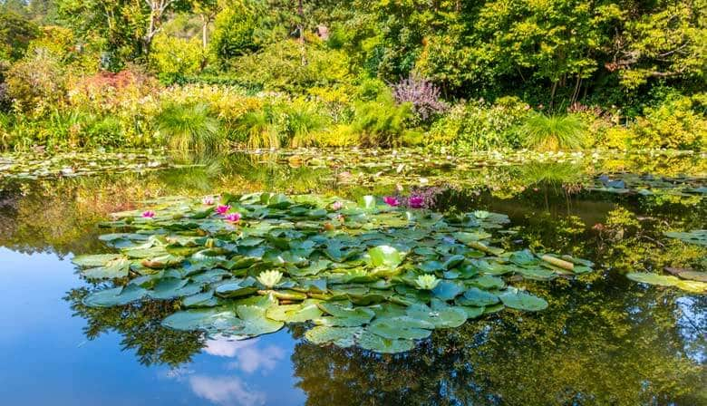 Guided Tour Tour of Giverny Monet's gardens and Auvers sur Oise from Paris in a Small Group, Lunch included