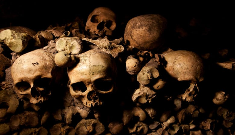 Skull in the Paris Catacombs