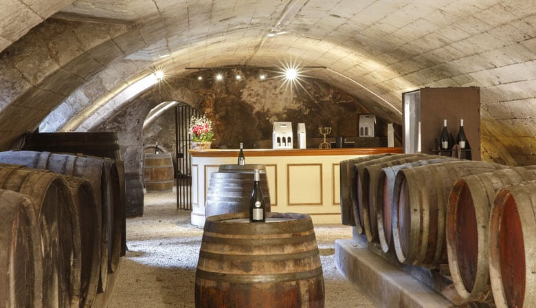 Discover wine cellar f the Loire valley