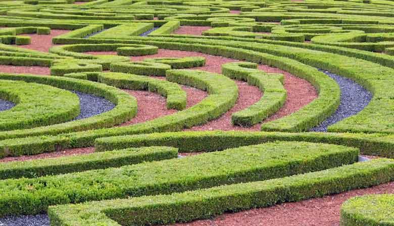 Entdecken Sie die Gärten von Vaux le Vicomte tagsüber