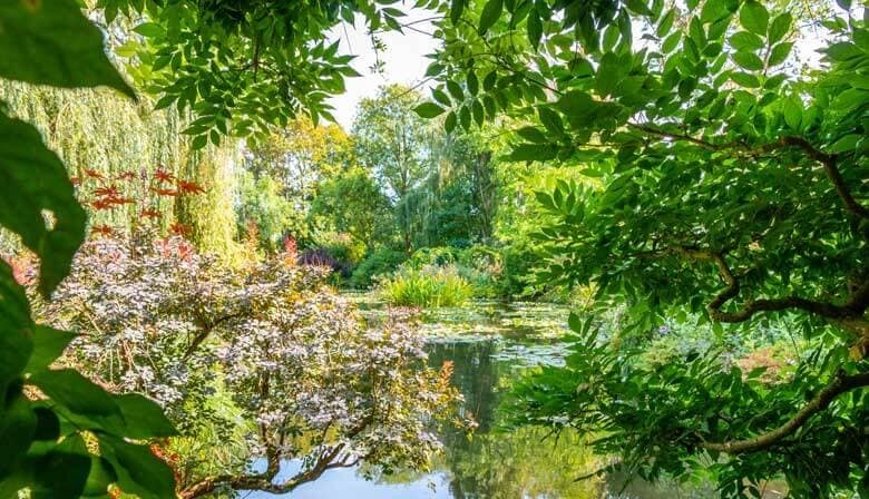Pond in the beautiful garden of Claude Monet's house