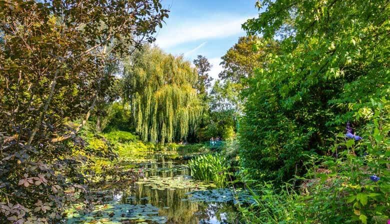 Árboles en el jardín acuático de Giverny