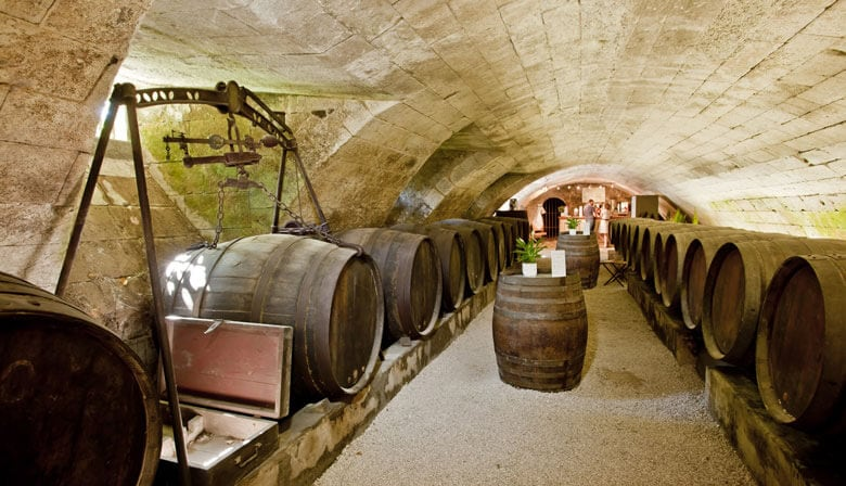 Discover Loire wines in Chenonceaux