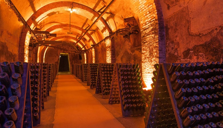 Guided visit of champagne cellars