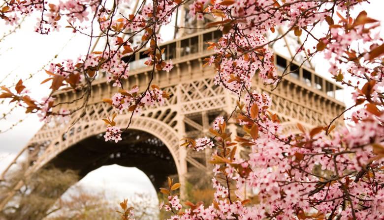 Ticket zum Entdecken des Eiffelturms