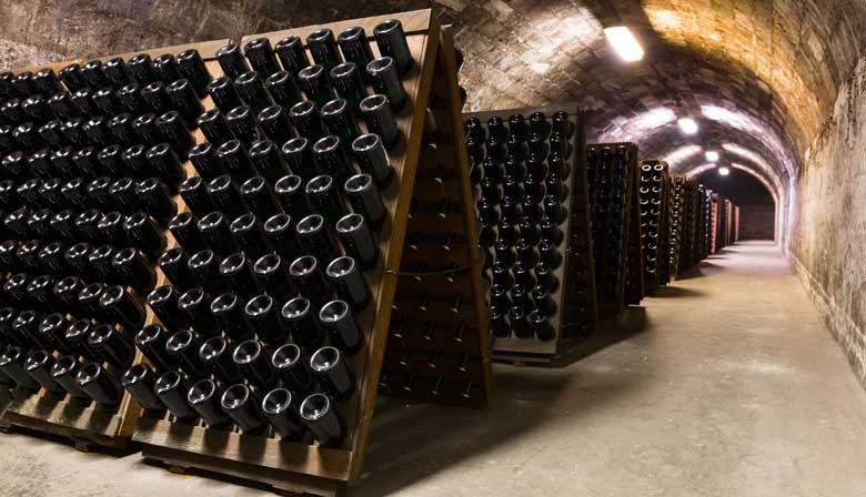 Guided tour in the Mumm cellar