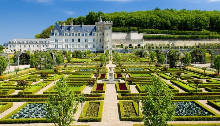 Visit the beautiful gardens of Villandry