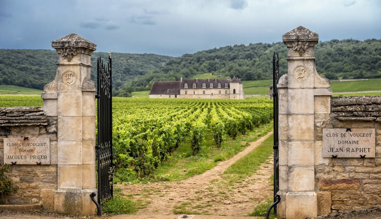 Discovery of Burgundy Half Day Tour from Dijon: wineyards & Heritage